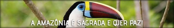 A Amazônia é Sagrada e quer Paz!